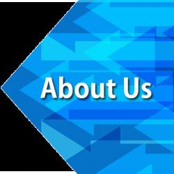 Wizi Technologies About Us